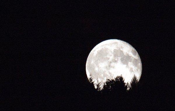 G-Der-Mond-ist-B600.jpg